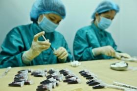 Việt Nam có cơ hội tiếp cận sớm vắc-xin COVID-19