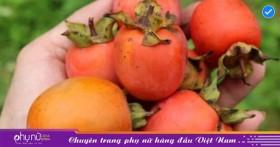5 điều đại kỵ khi ăn hồng, tránh phạm kẻo dạ dày đầy sỏi, tắc nghẽn đường tiêu hóa