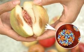 Hoa quả mốc có chứa chất gây ung thư loại 1