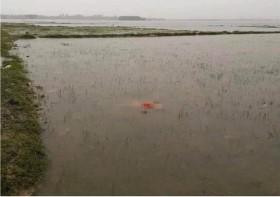 Đã tìm thấy thi thể bé gái 3 tuổi bị lũ cuốn trôi ở Hà Tĩnh