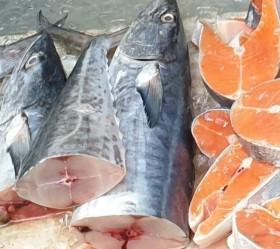 Cá thu có thể giúp làm giảm nguy cơ bệnh tiểu đường?