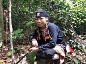 Đột nhập kho thảo dược quý hiếm của 'Thần y núi Tản' đánh tan căn bệnh về xương