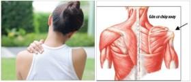 Ngừa chấn thương vai và cánh tay khi tập luyện