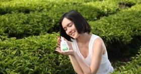 Dạ Hương – Tuyệt phẩm từ thiên nhiên chu toàn vùng kỳ quan