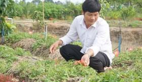 Thành công với mô hình trồng Sâm Bố Chính