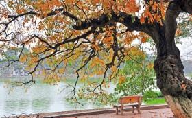 Thời tiết cả nước 10 ngày tới: Mưa rào và dông nhiều nơi, miền Bắc đêm và sáng trời lạnh